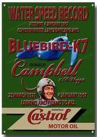 Bluebird 3