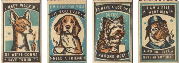 Dog matches Ravu Zupa